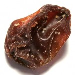 Minfulness Meditation on a Raisin to get rid of your stress!